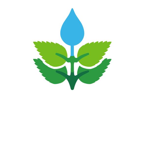 logo_color_white-01